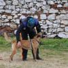 Cupa Braveheart Oradinum - Dresaj canin spectaculos în şanţul Cetăţii Oradea