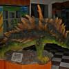 Expoziţie şi conferinţă la Muzeul Ţării Crişurilor - Ultimii dinozauri din Transilvania