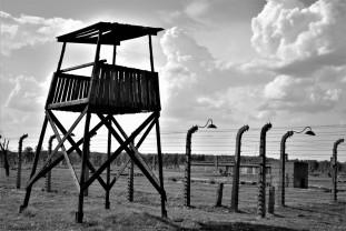 O expoziţie de fotografie în Sinagoga Sion - In memoriam Auschwitz