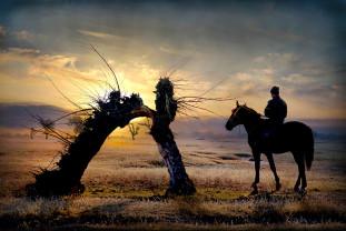 O nouă expoziţie de artă fotografică în Cetate - Impresii din Mongolia Internă