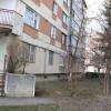 Regulamentul privind întreţinerea spaţiilor verzi - Municipalitatea orădeană, atacată în instanţă