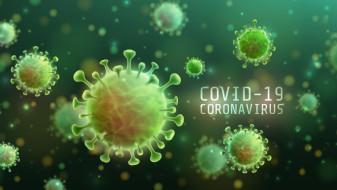Covid-19 în Bihor - 115 cazuri noi