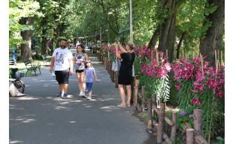 """Florarul Marius Sabău își ia rămas bun de la orădeni - """"Tot ce lăsăm în urma noastră, aici, în Oradea, ne reprezintă!"""""""