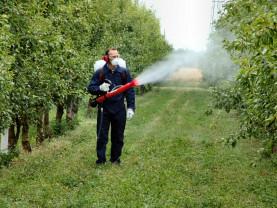 Buletin de avertizare fitosanitar - Tratamente pentru meri