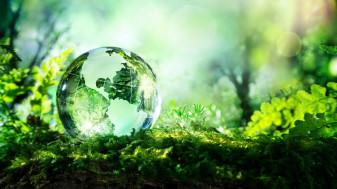 """Festivalul """"Green Days"""", pentru prima dată la Oradea - Două zile în stil verde"""