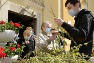 Intrarea Domnului în Ierusalim - Florii în pandemie