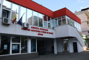 Peste 900 de joburi vacante în Bihor - Ofertă mare în Salonta
