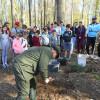 Acţiune de igienizare şi plantări în zona Aleşd - Civilizaţie ecologică