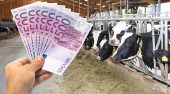 APIA. Subvenții 2021 - Data de referință în vigoare pentru plata ANT