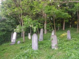 În Vadu Crişului a trait cândva o comunitate de evrei - Doar cimitirul mai stă mărturie