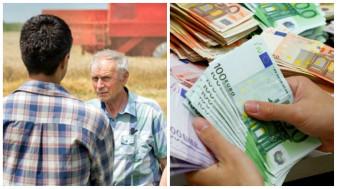 APIA: Cererile unice de plată - Au demarat controalele la fața locului