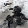 Trupurile mumificate a doi soți au fost descoperite în munți - Găsiţi după 75 de ani