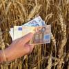 MADR: Sprijinul cuplat sector vegetal - Plafoanele aprobate pentru anul de cerere 2017