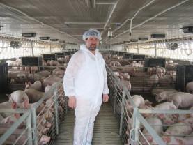DAJ Bihor. Susținerea crescătorilor de porci - Documente care trebuie depuse