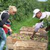 MADR: Fonduri pentru investiţii în fermele mici