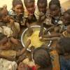 Foametea se extinde din nou, afectând 815 milioane de oameni - Efectul războaielor şi schimbărilor climatice