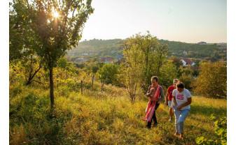 Pe strada Sofiei din Oradea - Prima grădină comunitară