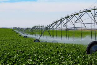 AFIR: Prin PNDR 2020 - Fermierii au la dispoziție, anual, 200 milioane euro