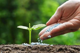 Protecţia apelor împotriva poluării cu nitraţii folosiţi în agricultură - Invitaţie la consultare publică