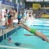 Peste 300 de înotători la maratonul de înot - Swimathon Oradea 2016, un succes