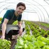 Programul tânărul fermier - Condiții și plăți APIA pentru agricultori