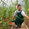 MADR: Instalarea tinerilor fermieri – Criterii de selecţie a proiectelor