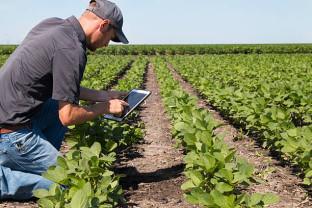 MADR. Angajarea tinerilor în agricultură - Fonduri aprobate