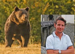 Cel mai mare urs din România şi UE a fost omorât într-o arie protejată din Covasna - Acuzații de braconaj princiar