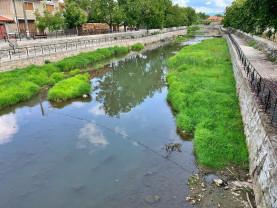 Beiuș - Valea Nimăiești, acoperită de gunoaie!