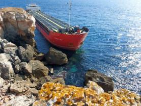 Marea Neagră se confruntă cu o catastrofă ecologică - Bulgarii au dat-o în bară
