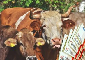 MADR. Fonduri suplimentare pentru zootehnie
