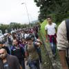 Vor decide soarta cotelor UE privind imigranţii - Referendum în Ungaria