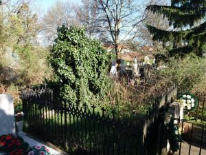 """Descoperiri inedite în Cimitirul Municipal """"Rulikowschi"""" - Complexul funerar ortodox uitat din Oradea"""
