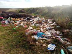 În atenția primăriilor: amenzi pentru cei care nu asigură curățenia - Obligaţii pentru instituţii, firme, cetăţeni