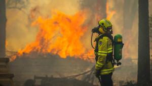 Incendii de vegetație și temperaturi record - Australia a luat foc