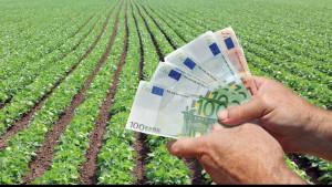AFIR. Asigurarea culturilor agricole - Fonduri europene pentru fermieri