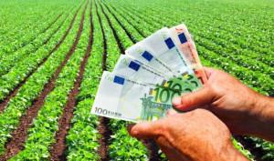 AFIR. Submăsura pentru tinerii fermieri - A fost prelungit termenul de înscriere pentru diaspora