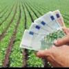 CJAPIA Bihor: Plăţi în sumă de circa 8,5 milioane lei către fermieri