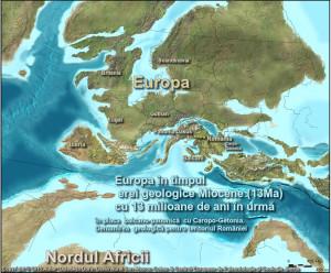 O hartă regăsită după un secol aduce dovezi noi - Viaţa în Cretacic şi Țara Hațegului