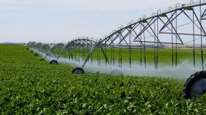 MADR. Apa pentru irigații - Contractele - transmise în format electronic