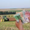 AFIR: La depunerea cererii de finanţare - Cazierul judiciar - fără infracţiuni economice