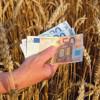 APIA: Fonduri europene - Subvenţii agricole care vor intra la plată în 2018