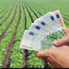 APIA: Cuntumurile subvenţiilor acordate fermierilor