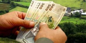 CJAPIA Bihor. Sprijinul cuplat - Cuantumurile plăţilor în sectorul vegetal