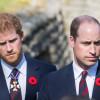 """William şi Harry, destăinuiri emoţionante despre mama lor - """"A fost cea mai bună!"""""""